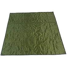 Rayami - Lona impermeable, 215 x 215 cm, para usar al aire libre,