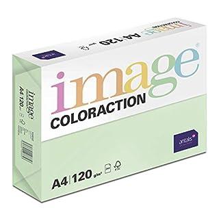 Coloraction 838A 120S 23 - Antalis Kopierpapier, DIN A4, 120 g/qm, Farbe: forest - grün