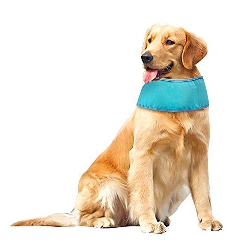 Kühlmanschette für Hunde, Abkühlung im Sommer