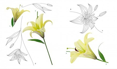 flores-lilies-2-sheets-pegatina-para-pared-85-x-65cm