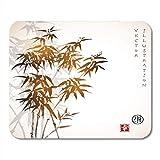 Bamboo ink (souris, surface, stylet) | Choisir un produit en