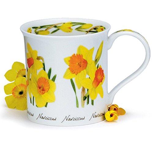DUNOON Bone China Spring & Summer Flowers Bute Tasse, Porzellan, Daffodil Daffodil Bone China