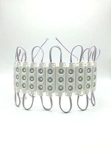 YXH® LED Modul 12V Kaltes Weiß (3LED Einspritzmodul-Kit) für DIY, LED-Beleuchtung  Buchstaben Zeichen Billboard Licht, drinnen draußen Wasserdichte 5730 SMD (20 Stück / Packung) (Krebs Zeichen Schmuck)