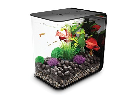 biOrb Reef One Flow Aquarium -