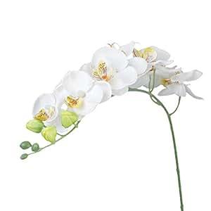 1 Pezzo Di Simulazione Artificiale Orchidea Farfalla Fiore Pianta Casa Decorazione - Bianco