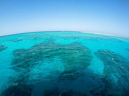 Unterwasser-Kornkreise
