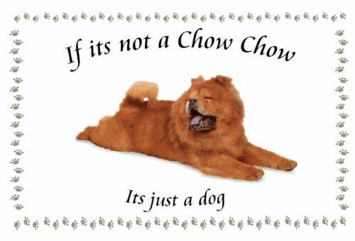 chow-chow-portachiavi-a-forma-di-cane-se-non-e