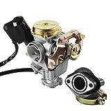Topwill Vergaser, 50cc Vergaser 18mm Ersatzvergaser mit Ansaugstutzen Passend für Rex RS 400 / RS 450 / RS 460 /GY6 50cc