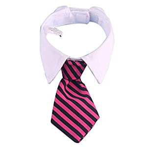Hilai Chat Lien de Chien de Compagnie Costume Collier Cravate pour Petits Chiens Chiot Toilettage Accessoires Rouge et Noir Bar 1pc