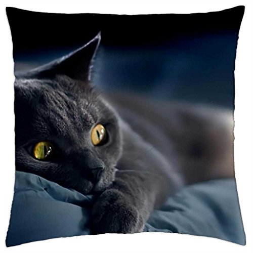 Chartreux cat - Throw Pillow Cover Case (18\