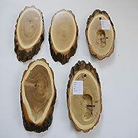 GTK – Cornamenta & Trofeo madera de crucero 5 unidades acacia REH trofeos carteles grandes con compartimento de mandíbula cervatillo árbol disco de árbol