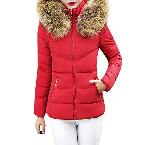 Quaan Frau Dick Oberbekleidung, Kapuze Mantel Kurz Schlank Baumwolle- gepolstert Jacken Pelz Winter...