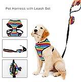 Tineer Rainbow Soft Mesh Hundegeschirr mit Leinen-Sets - einstellbar Hundewelpen ohne Zuggeschirr Komfort gepolsterte Laufweste, EIN kostenloser Müllbeutel (S)
