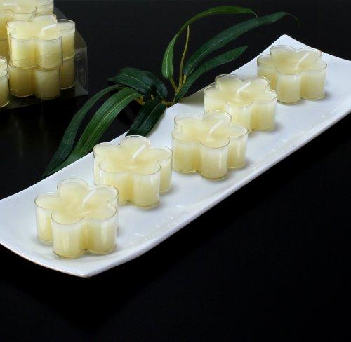 Teelichter Blüten Blumen Kerzen creme beige, Packung mit 12 Stk.