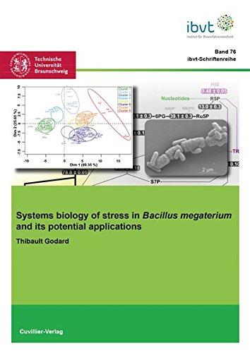 Systems biology of stress in Bacillus megaterium and its potential applications (Schriftenreihe des Institutes für Bioverfahrenstechnik der Technischen Universität Braunschweig, Band 76)