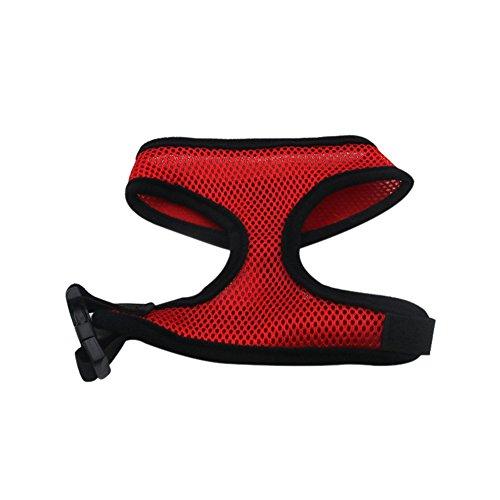 PanDaDa Haustier Hundegeschirr Atmungsaktiv Mesh-Design Coole Puppy Soft Harness und Leine Set für...