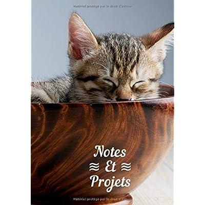 Carnet De Notes Et Projets: Pour les passionnés de Chats et Chatons, Livre A4, Cahier d'écriture, Bullet journal, Planning,  Organizer, Journal, 100 pages 7*10 pouce