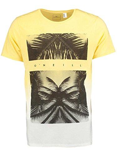 O'Neill Herren LM Tropicool T-shirt powder white