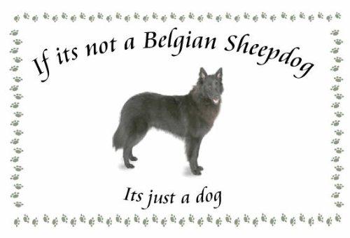 Belgian Sheepdog – Novelty Dog keyrings – If its not