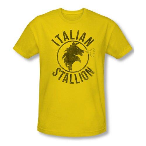 Rocky - Herren italienische Hengst T-Shirt in gelb, XX-Large, Yellow
