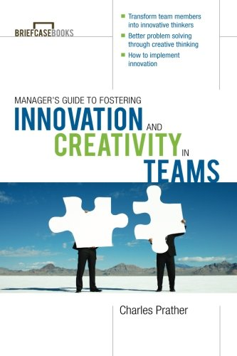 The Manager's Guide to Fostering Innovation and Creativity in Teams (Briefcase Books Series)