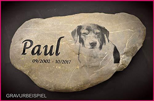 Gedenkstein Hund Foto, Grabstein Tier, Grabschmuck, Gravur Naturstein, Foto Gravur, Stein Gravur Motiv Foto Pfote