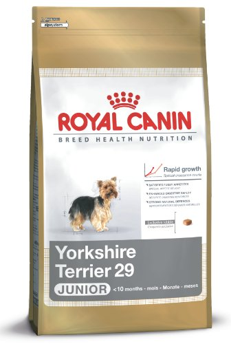Produktbild bei Amazon - Royal Canin 35118 Breed Yorkshire Terrier Junior 1,5 kg - Hundefutter