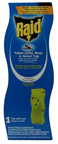 raid-wasp-and-yellow-jacket-swing-trap-by-raid
