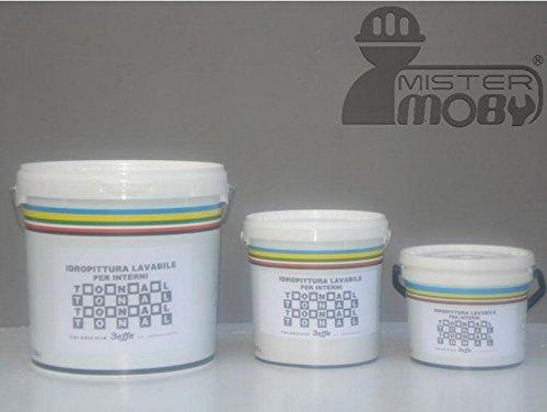 Mister Moby Pittura Tempera Murale Vernice Lavabile Tonal Muri Interni Ottimo Bianco 5 Litri
