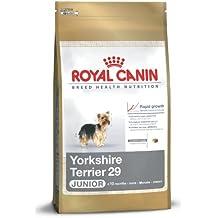 Royal Canin Yorkshire Terrier Junior 29 1,5 kg