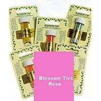 Pasticceria Artigianale Coloranti Tinta in Polvere Rosa 7ml
