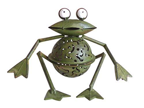 Silex Frosch mit