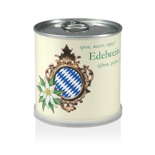 Extragifts dans la boîte fleur edelweiss bavaria
