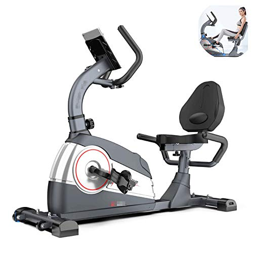 Xulong spinning bike, cyclette indoor cyclette orizzontale home trainer di controllo magnetico con staffa piatta trainer di aerobica ideale