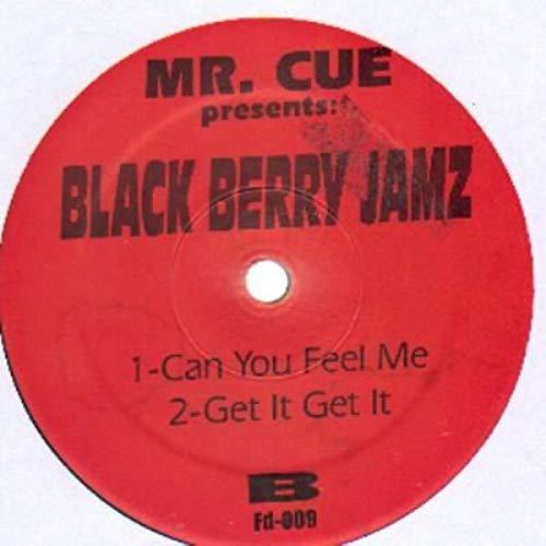Black Berry Jamz [Vinyl Single 12''] 009 Blackberry