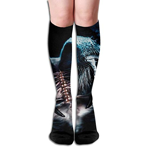 Compression Socks Spider Painting High Boots Stockings Long Hose For Yoga Walking For Women Man (Spider-girl-hose)