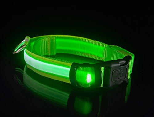 GRÜN USB aufladbare LED-beleuchteten Sicherheitshalsband für Hund mit breiten, kontinuierlichen super helle flache LED-Licht, NEU! (M max 50 cm)