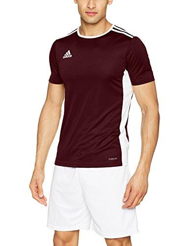 Adidas entrada 18, t-shirt uomo, marrone (maroon/white), xl