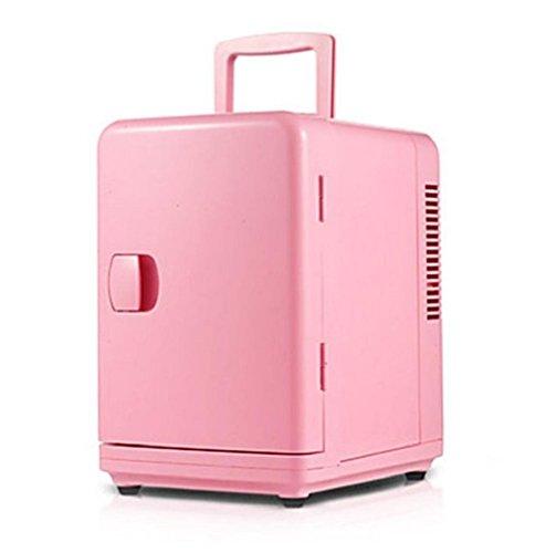 wenrit Mini refrigerador del Coche del Coche de Doble Uso Refrigeración Preservación Calefacción Aislamiento del refrigerador del Coche 6L