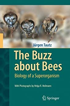 The Buzz about Bees: Biology of a Superorganism by [Tautz, Jürgen]