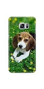 Casenation Cute Beagle Samsung Galaxy S6 Edge Plus Glossy Case
