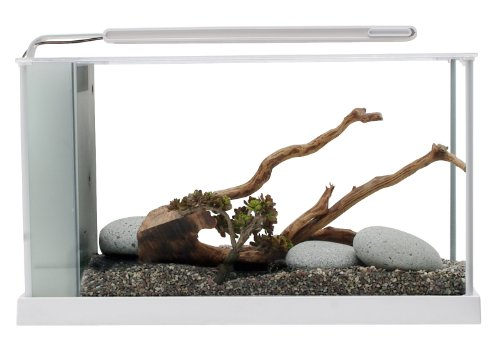 Fluval Aquarium Spec V 19 L Blanc
