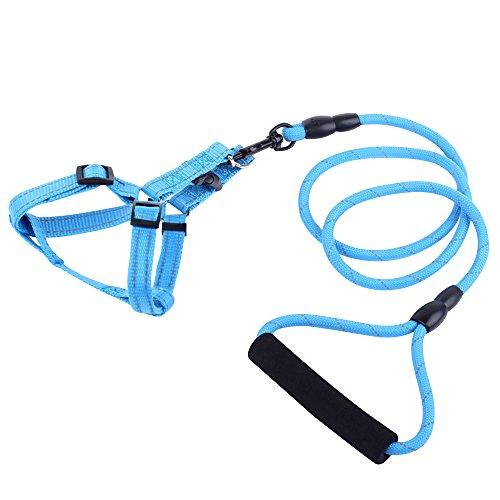 alxcio-reflechissant-laisse-pour-chien-avec-poignee-sangle-reglable-corde-chaine-de-protection-exter