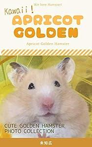 Kawaii! Apricot Golden: Hamster photographs