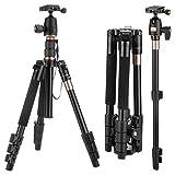 """1.30KG Kamera Stativ SLR/DSLR, 55,12""""/ 140 cm leichtes Reisen Kamerastativ, Kamera DREI-/Einbeinstativ mit 360 Kugelkopf, Monopad für (Aluminium, Höhe: 55,12"""", Belastbarkeit: 8KG-10KG) mit Tasche"""
