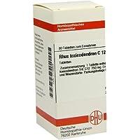 RHUS TOXICODENDRON C 12 Tabletten 80 St preisvergleich bei billige-tabletten.eu