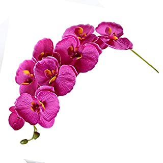 RXYY Fashion Orchid Artificial Flowers DIY Artificial Butterfly Orchid Silk Flower Bouquet Phalaenopsis Wedding Home Decoration P20, Dark Purple