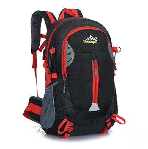 Wmshpeds Borsa a tracolla femmina alpinismo outdoor bag borsa da viaggio versione coreana di marea Sport Tempo libero Zaino computer C