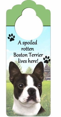 E&S Pets Boston Terrier Holzschild A Spoiled Rotten Boston Terrier Lives Here, mit künstlerischem Foto, 25,4 x 10,2 cm, kann an Türknöpfen oder überall im Haus aufgehängt Werden -
