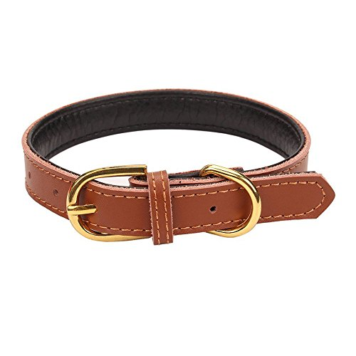 pingxia-classic-padded-pet-collars-handmade-for-puppy-small-medium-dogs-with-the-finest-genuine-leat
